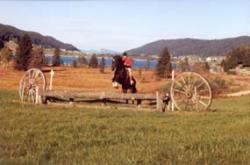 centre-equestre-activites-cross