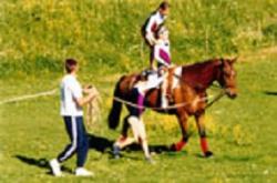 centre-equestre-activites-voltige